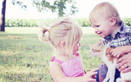 Kid Friendly Tips for Meeting Pets