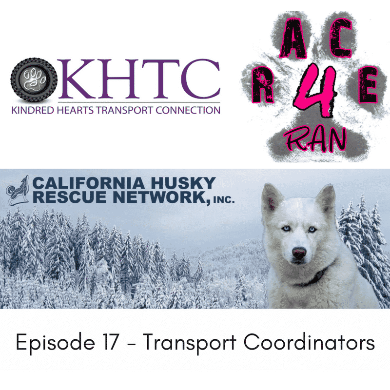 Episode 17 – Jessica, Kelsey, Ginger and Monica, Transport Coordinators