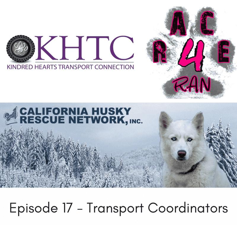Episode 17 – Jessica, Kelsey, Ginger and Monica, Transport Coordinators
