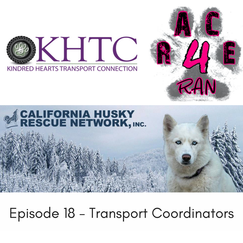 Episode 18 – Part 2 with Jessica, Kelsey, Ginger and Monica, Transport Coordinators