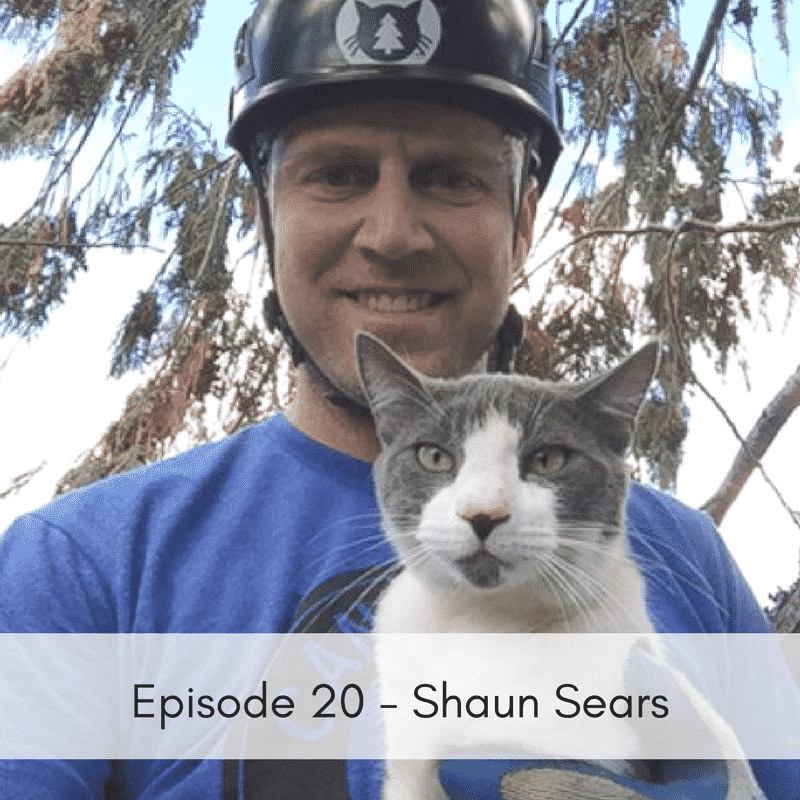 episode 20 shaun sears canopy cat rescue animal rescue