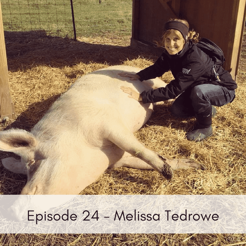 Episode 24 – Melissa Tedrowe, Wisconsin State Director, The HSUS