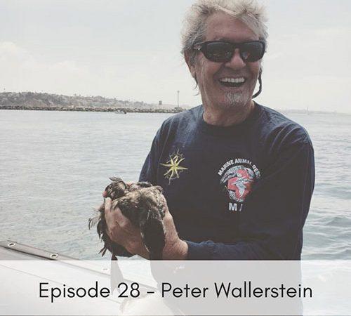 Episode 28 – Peter Wallerstein, Marine Animal Rescue
