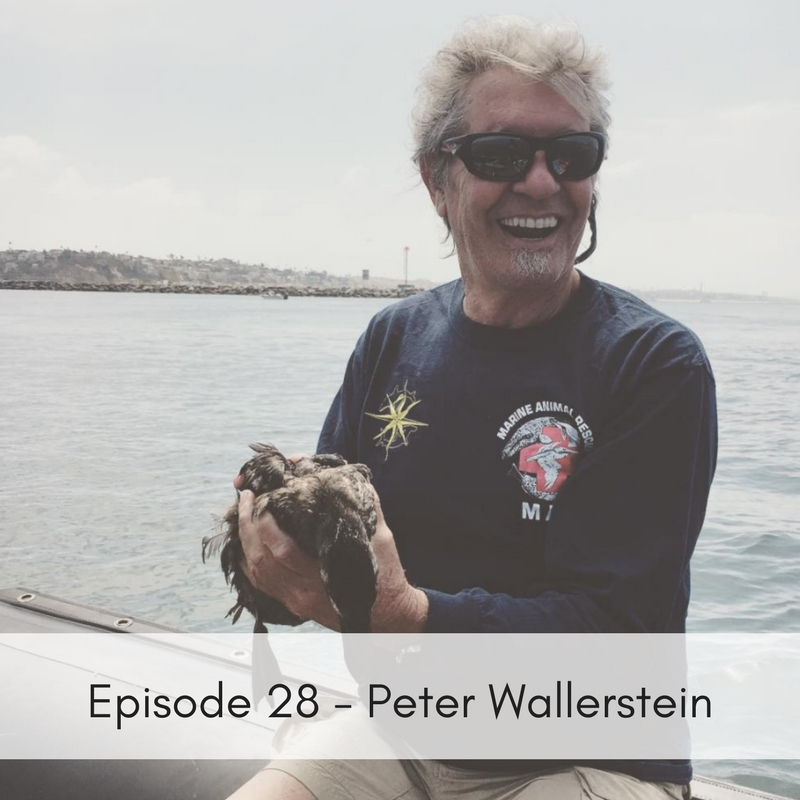 Episode 28 – Peter Wallerstein, Marine Animal Rescue