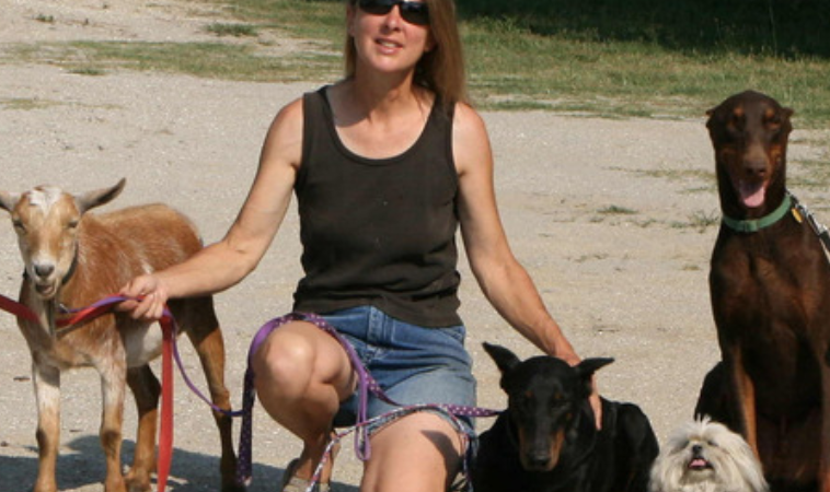 Episode 25 – Dr. Lynne Swanson, Safe Harbor Farm K9 Rescue & Rehabilitation Center