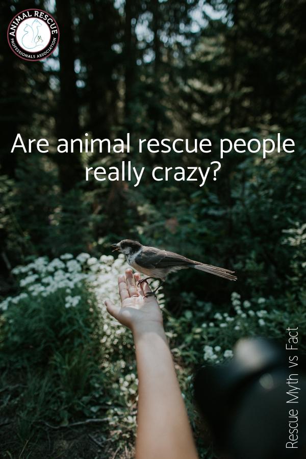 Are animal rescue people crazy