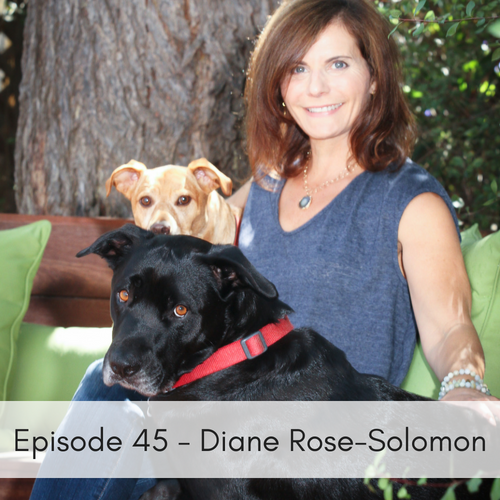 Episode 45 – Diane Rose-Solomon