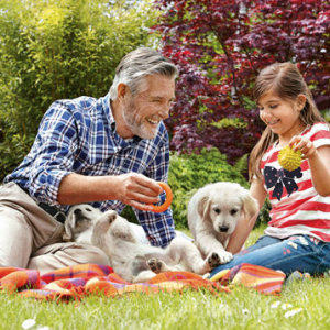people and dogs outdoors on blanket