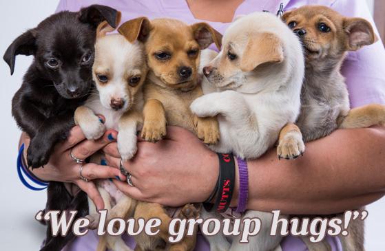 Big Hug Heart Day, group hug