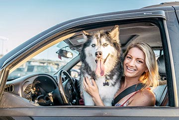 happy dog in car with lady