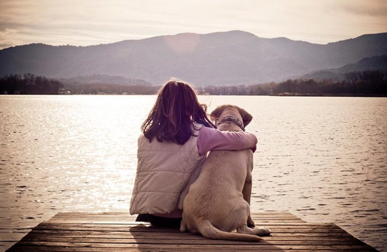 Today is a 2 fur – work like a dog & friendship day!