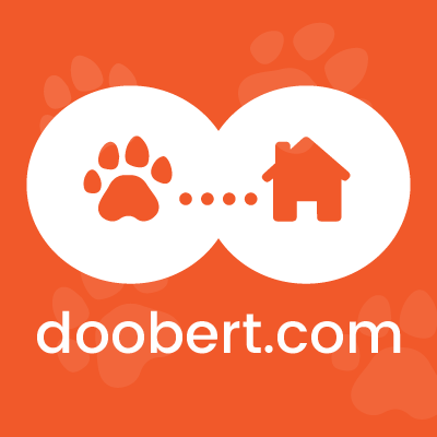 Doobert.com