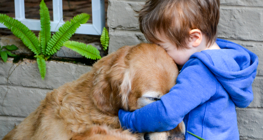 Like you need an excuse to hug your hound
