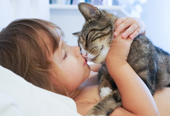 little girl kissing cat