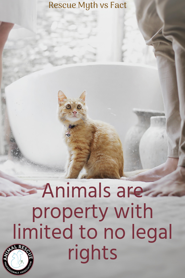 Animals are property with limited to no legal rights
