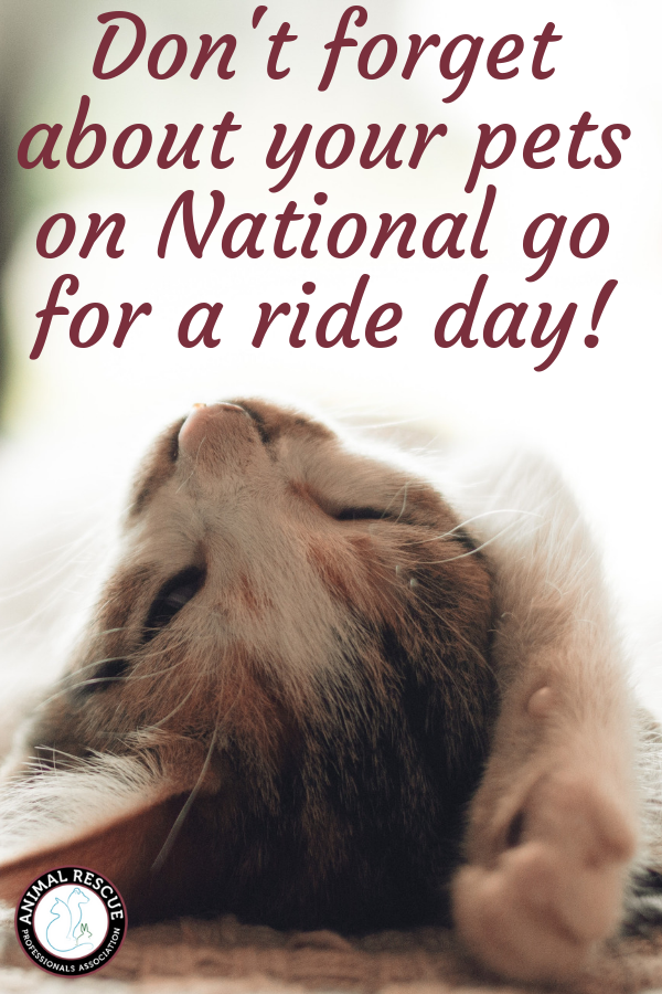 National go for a ride day