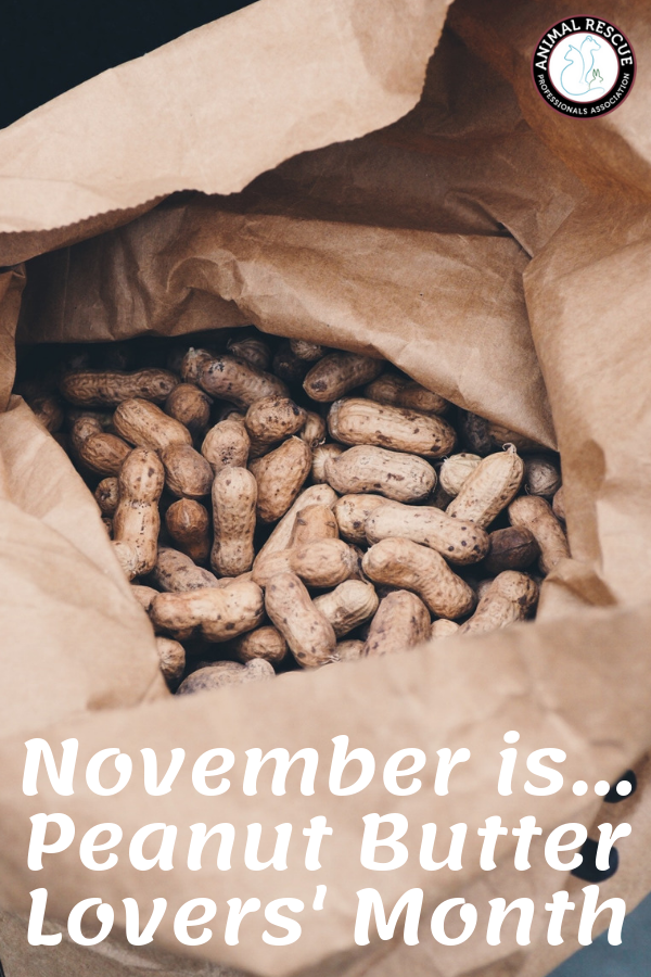November is Peanut Butter Month