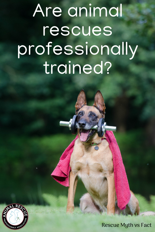 Are animal rescues professionally trained_