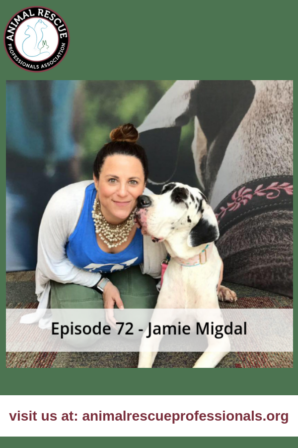 Episode 72 - Jamie Migda