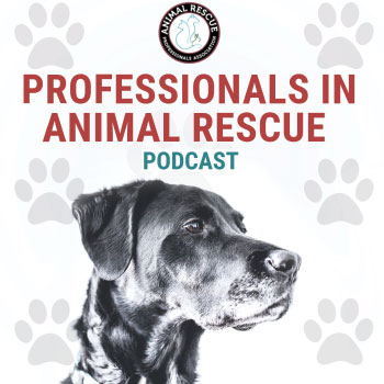 Professionals in Animal Rescue