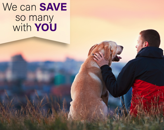Rescue Myth vs. Fact: Animal rescues get paid for saving animals