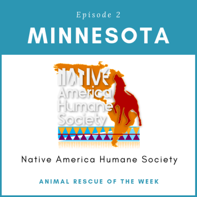 Animal Rescue of the Week: Episode 2 – Native America Humane Society in Minnesota