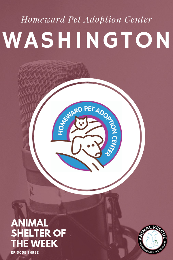3. Homeward Pet Adoption Center_WA_Animal Shelter of the Week