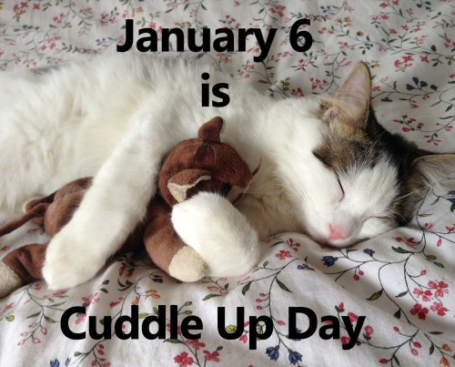 It's National Cuddle up Day – Which furry friend are you cuddled with?