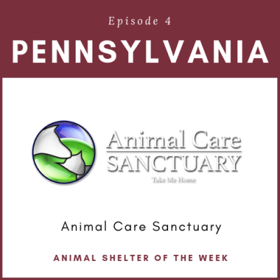 Animal Shelter of the Week: Episode 4 – Animal Care Sanctuary in Pennsylvania