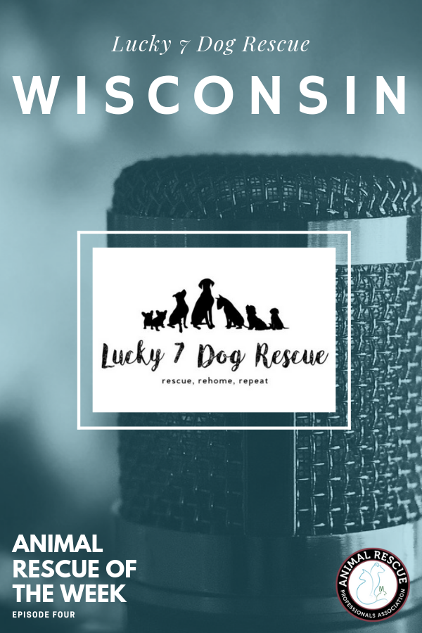 4. Lucky 7 Dog Rescue_WI_Animal Rescue of the Week