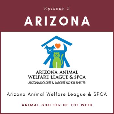 Animal Shelter of the Week: Episode 5 – Arizona Animal Welfare League in Arizona