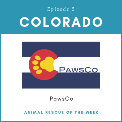 Animal Rescue of the Week: Episode 5 – PawsCo in Colorado
