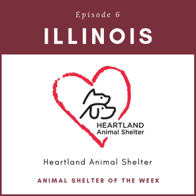 Animal Shelter of the Week: Episode 6 – Heartland Animal Shelter in Illinois