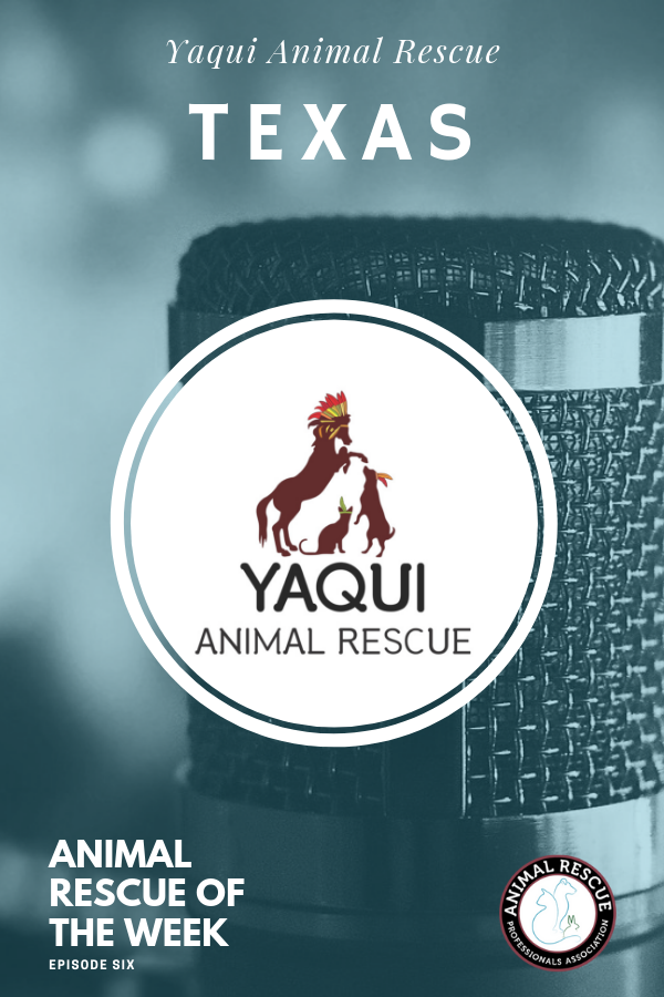 6. Yaqui Animal Rescue_Animal Rescue of the Week