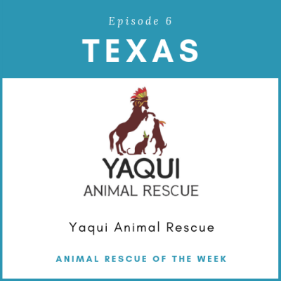 Animal Rescue of the Week: Episode 6 – Yaqui Animal Rescue & Sanctuary in Texas