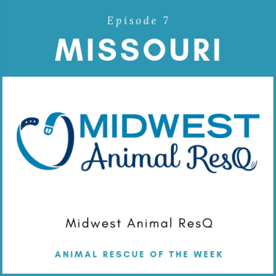 Animal Rescue of the Week: Episode 7 – Midwest Animal ResQ in Missouri