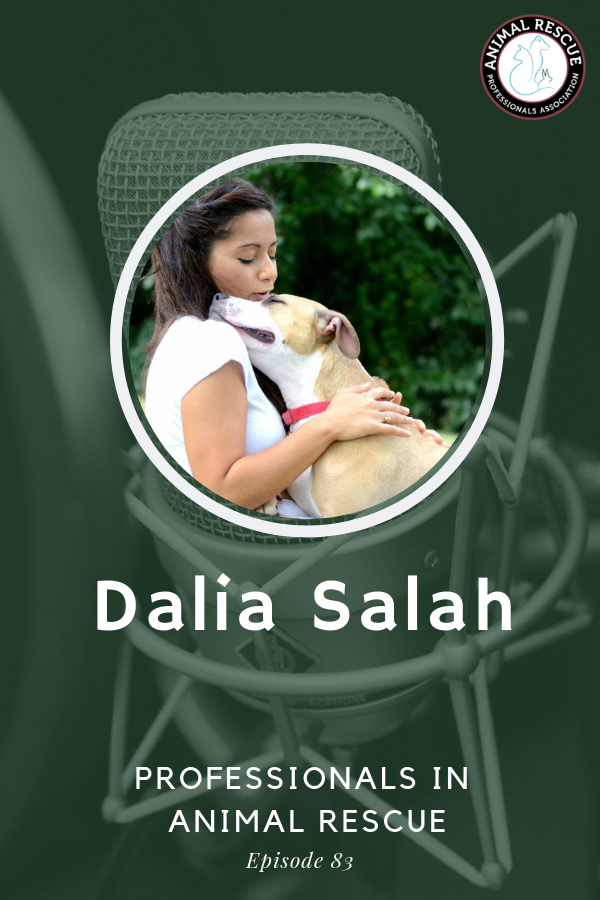 Dalia Salah - Professionals in Animal Rescue