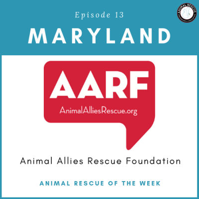 Animal Rescue of the Week: Episode 13 – Animal Allies Rescue Foundation in Maryland