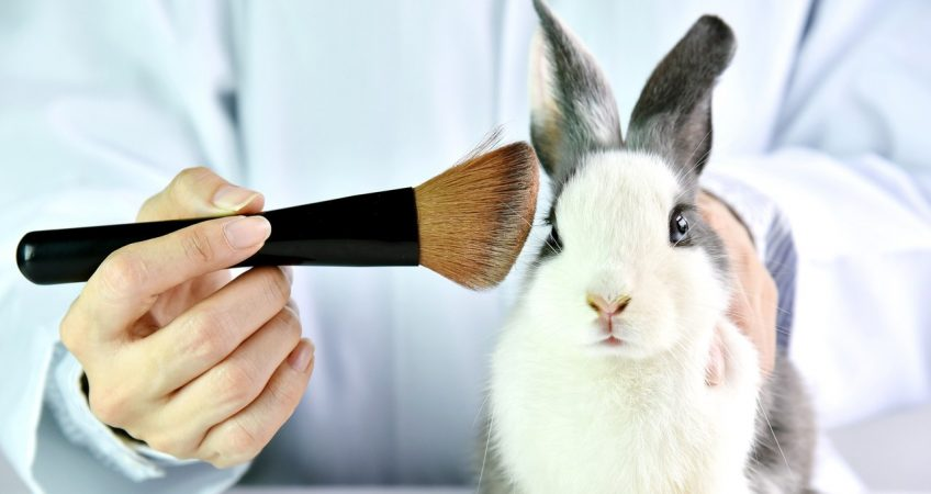 Cosmetic Testing on Animals – When Will America See the Light?