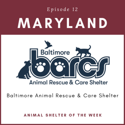 Animal Shelter of the Week – Episode 12 – Baltimore Animal Rescue & Care Shelter (BARCS) in Maryland