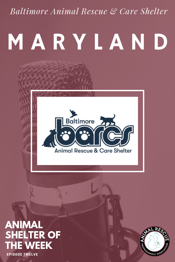 Baltimore Animal Rescue & Care Shelter_Animal Shelter of the Week