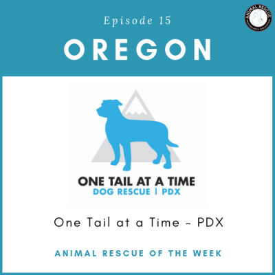 Animal Rescue of the Week: Episode 15 – One Tail at a Time PDX in Oregon