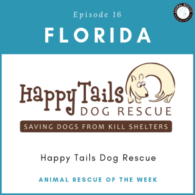 Animal Rescue of the Week: Episode 16 – Happy Tails Dog Rescue in Florida