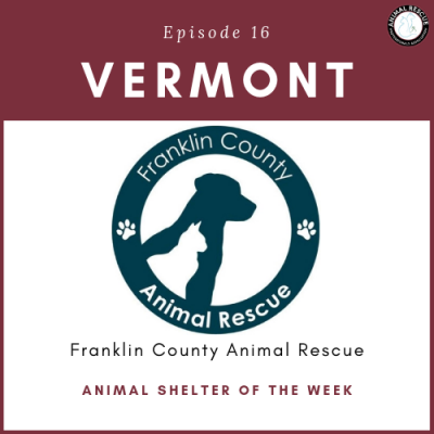 Animal Shelter of the Week: Episode 16 – Franklin County Animal Rescue in Vermont