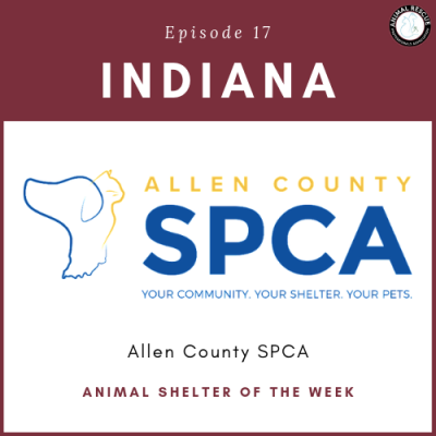 Animal Shelter of the Week: Episode 17 – Allen County SPCA in Indiana