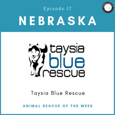 Animal Rescue of the Week: Episode 17 – Taysia Blue Rescue in Nebraska
