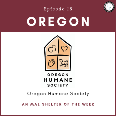 Animal Shelter of the Week: Episode 18 – Oregon Humane Society in Oregon
