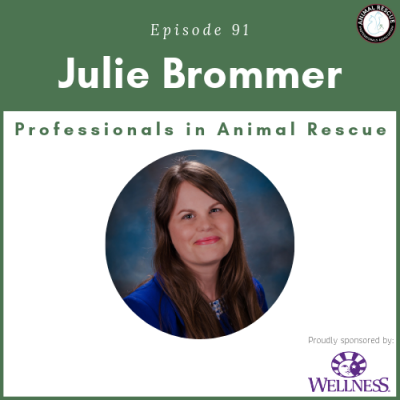 Episode 91 – Julie Brommer