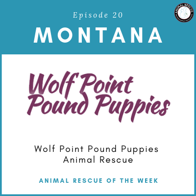 Animal Rescue of the Week: Episode 20 – Wolf Point Pound Puppies