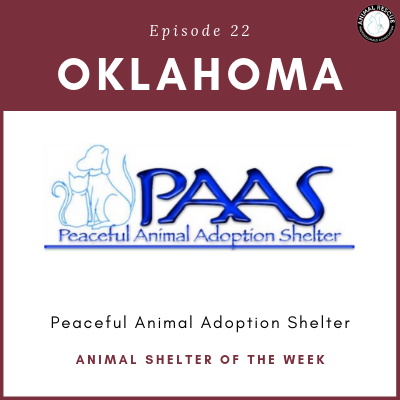 Animal Shelter of the Week: Episode 22 – Peaceful Animal Adoption Shelter in Oklahoma